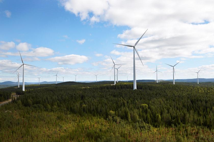 Vindmøller og grønn skog. Foto