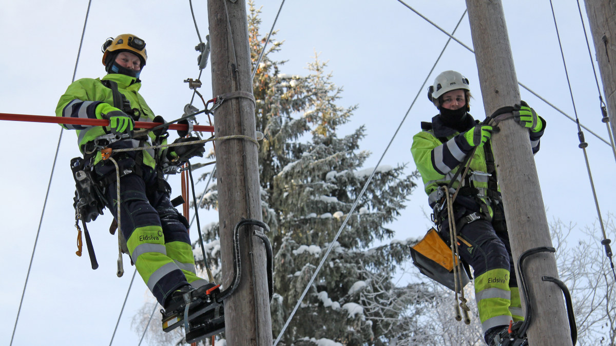 To energimontører med stolpesko i strømmaster. Foto