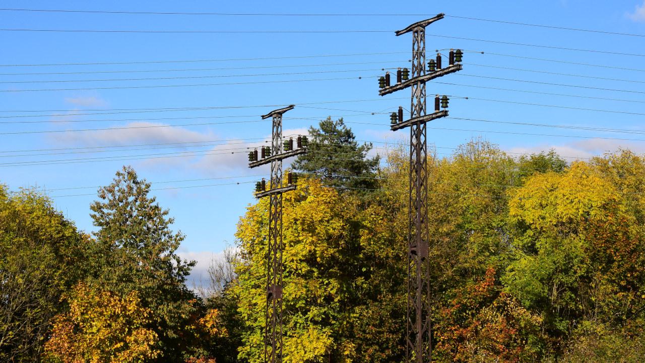 Kraftmaster omgitt av trær i høstfarger. Foto