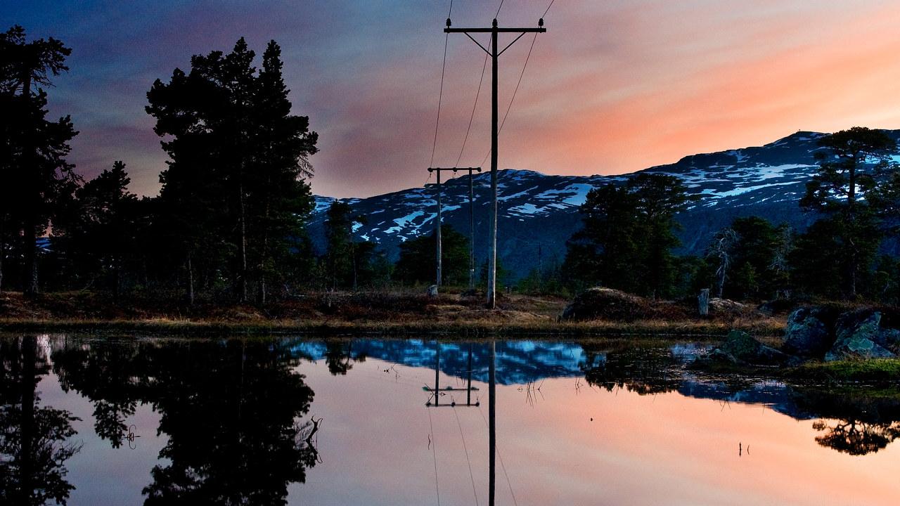 Strømnett i fin natur og rosa himmel. foto